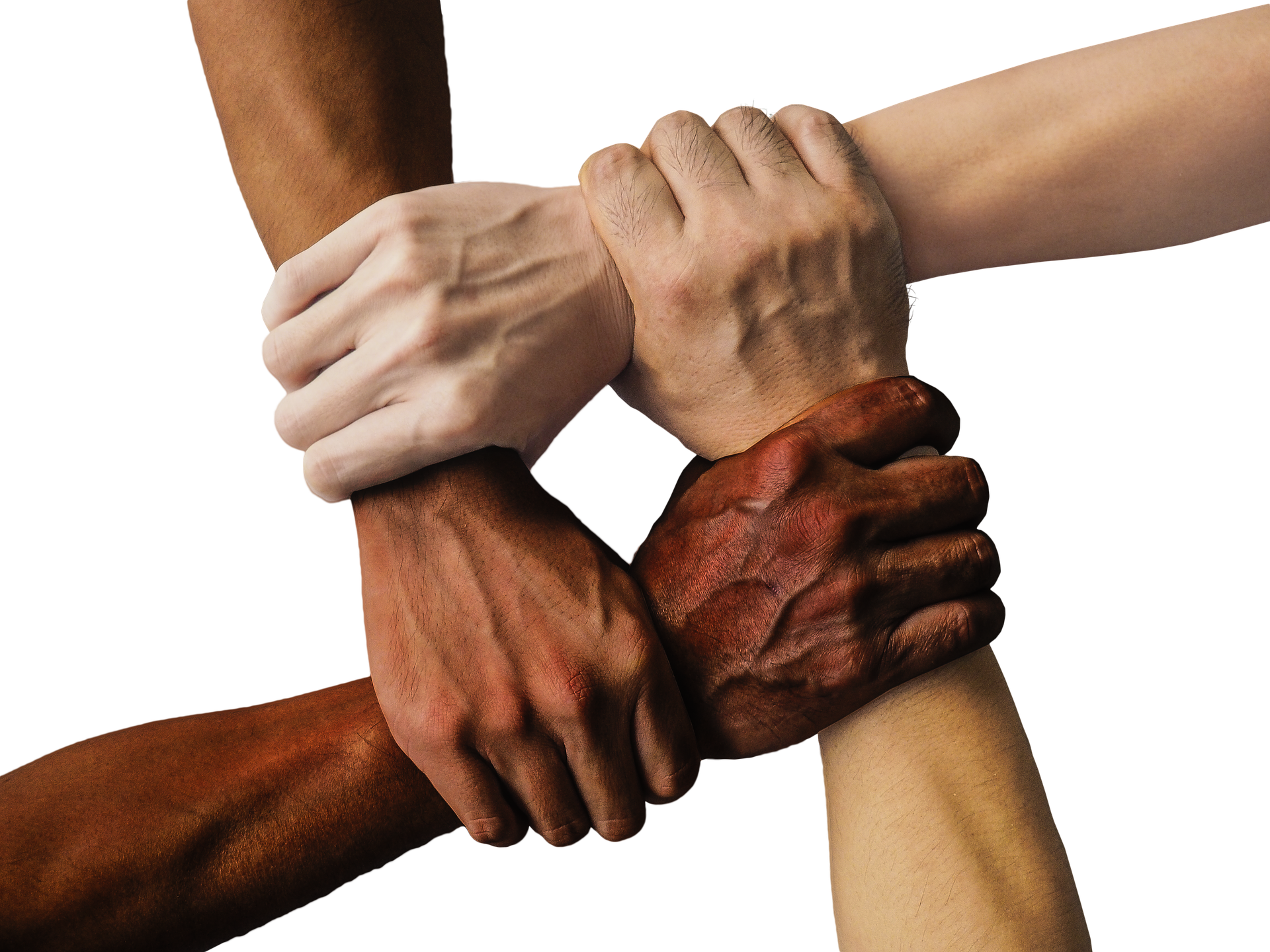 ·.¸¸.·♩♪♫ 💕 Amizade Sem Fronteira 💕 ♫♪♩·.¸¸.· Oficial | Chat | Bate Papo
